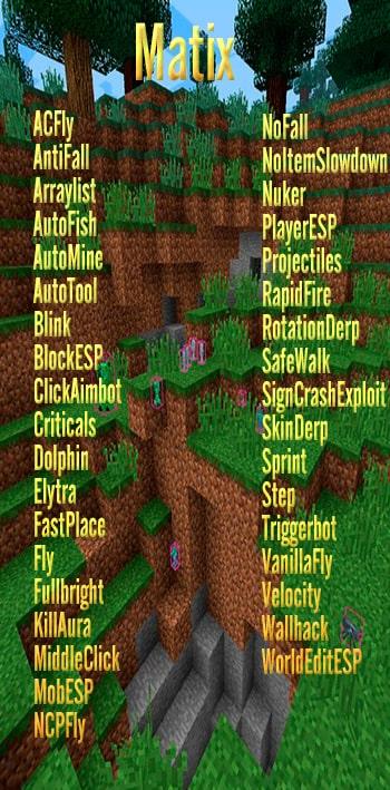 Matix Minecraft