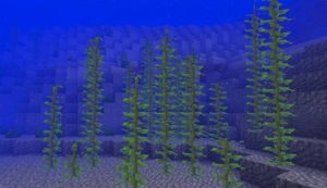 Minecraft ламинарии