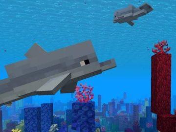 дельфин майнкрафт