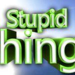 Stupid Things minecraft
